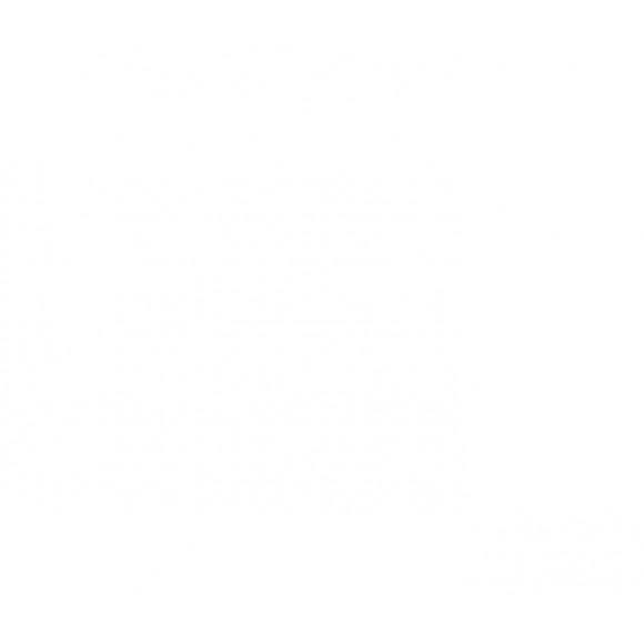 Portail battant, type CHOREY, avec suivi de pente (L518 | H150)